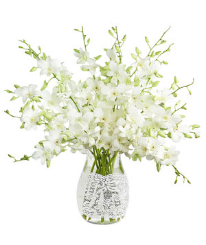 https://www.realsimple.com/sites/default/files/styles/rs_main_image/public/1491245914/white-dendrobium-orchids.jpg?itok=RjnVUnMj