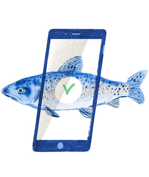 fish-sustainabilty-phone