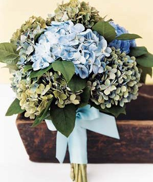 0717blue-bunch