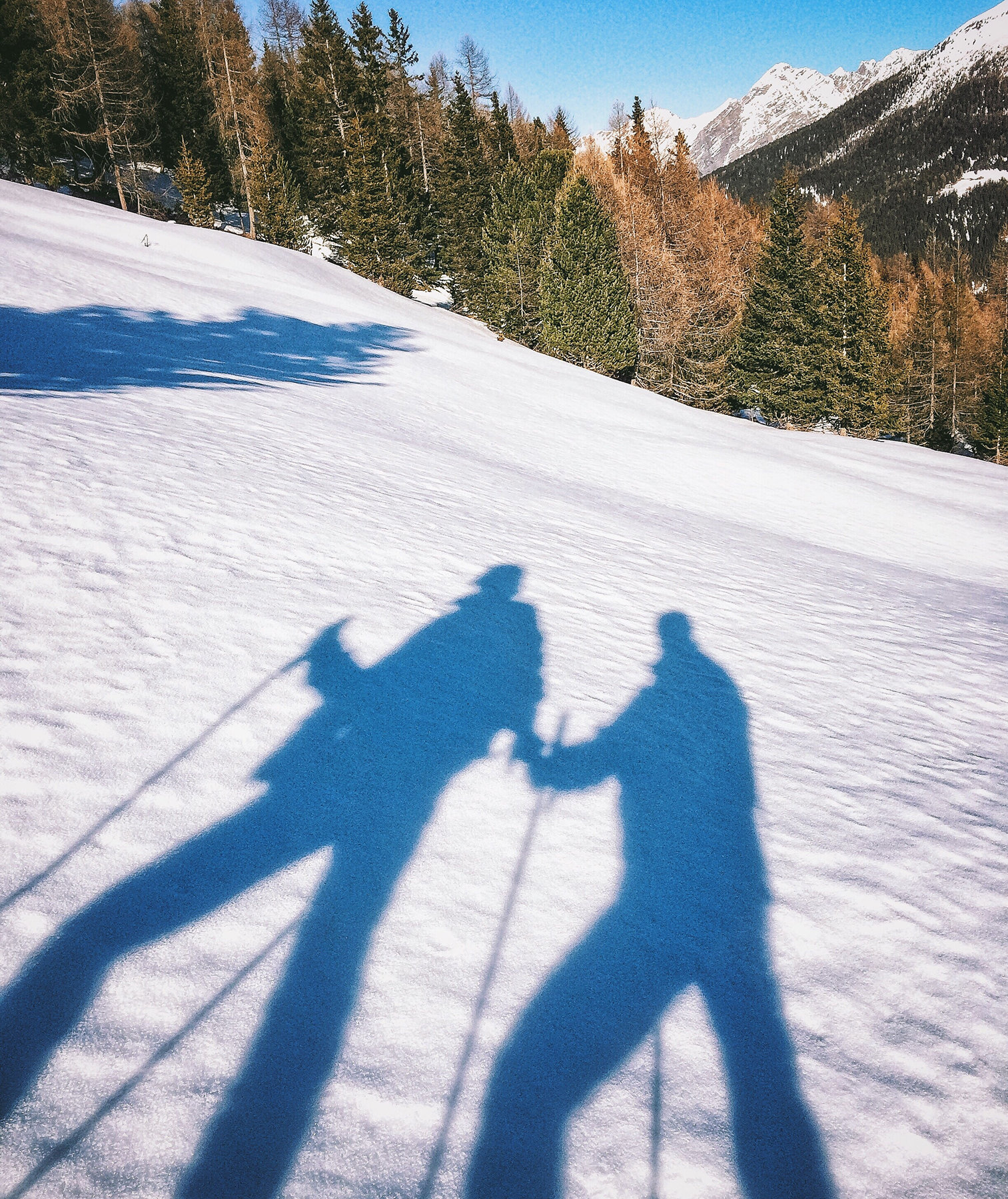 skier-shadows-snow